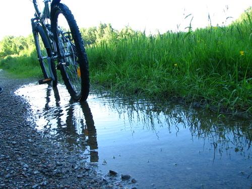 Cykling i Sverige