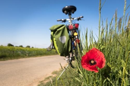 Ta med cykeln på semestern